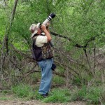 Mission, Texas - birdwatching (exposure & crop)_resize